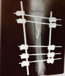 Weardale Vets - Surgery Image